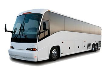 49 seater